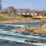石川県金沢市 犀川河川敷