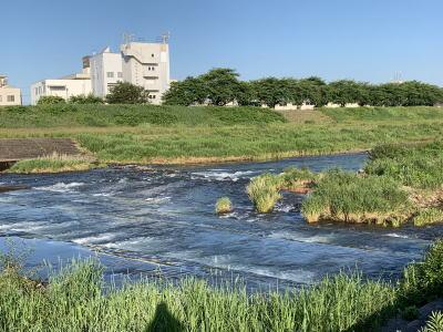 犀川河川敷 2021年5月31日(月)