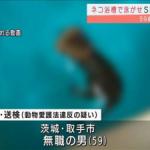 猫を浴槽で泳がせSNSに「虐待動画」59歳男を逮捕
